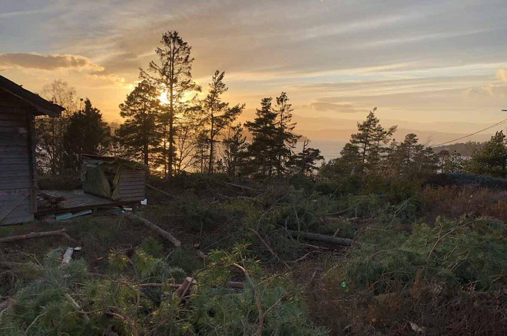H22 - utsikt mot Oslofjorden